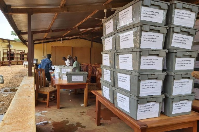Voters in Central African Republic are allowed to check their names on provisional voters' lists